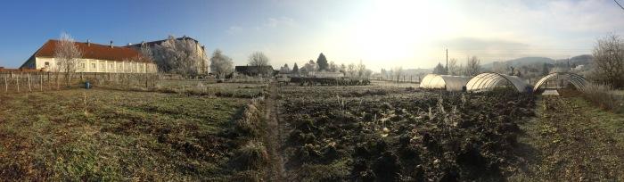 panorama_gärterei.jpg